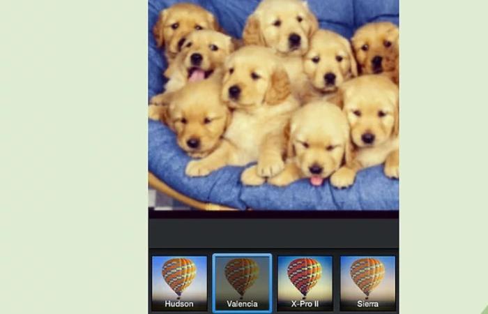 Como conseguir cientos de likes en tus fotos de Facebook e Instagram gratis 11